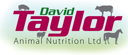 David Taylor Animal Nutrition Ireland